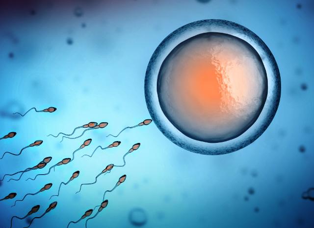 Biogroup - biologie de la reproduction