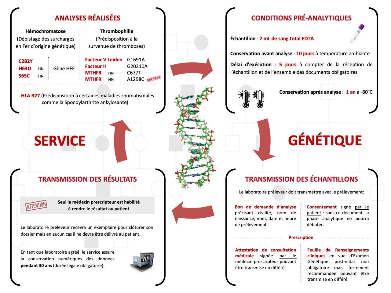 Biologie de la génétique Biogroup